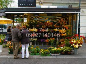 کانکس گل فروشی (4)